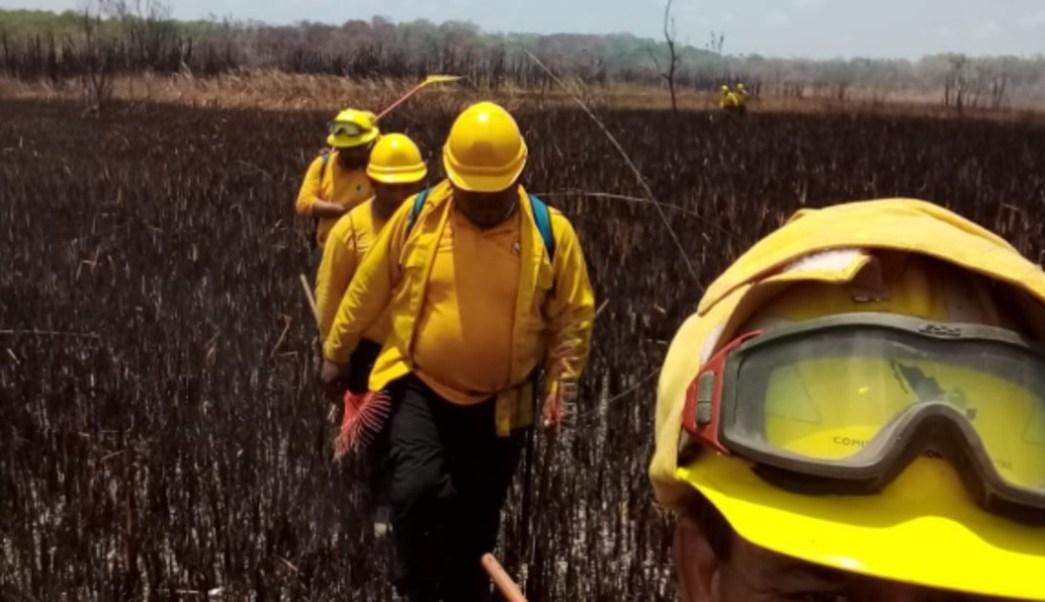 Foto: El incendio inició el pasado jueves 11 de Julio y según la Conafor podría tardar 5 días más para controlarlo, 22 de julio de 2019 (Twitter @CONAFOR)