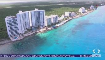 Continúa la llegada de sargazo en Quintana Roo