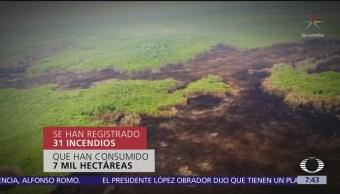Continúa la lucha contra incendio en reserva de Quintana Roo