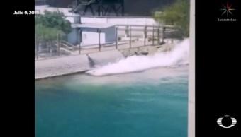 Grupo México derrama ácido sulfúrico en Mar de Cortés