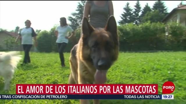 FOTO: El amor de los italianos por las mascotas, 20 Julio 2019