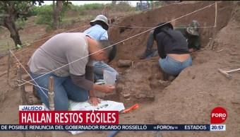 Foto: Hallan Restos Fósiles Zona Agrícola Jalisco 24 Julio 2019