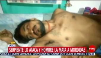Hombre atacado por serpiente mata al animal a mordidas