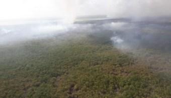 Incendio destruye más de dos mil hectáreas en reserva de Sian Ka'an