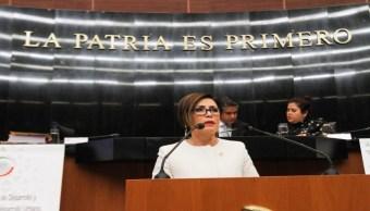 Foto Perfil de María del Rosario Robles Berlanga 30 julio 2019