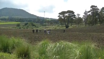 Foto: peritajes en Tlalpan, FOROtv