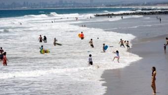 Foto: Las autoridades emiten alerta en las playas de San Diego California por aumento en picaduras de rayas, el 6 de julio de 2019 (EFE, archivo)