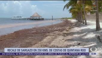 Quintana Roo se prepara para llegada masiva de sargazo