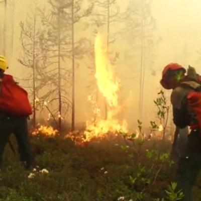 Incendios forestales en Rusia afectan a 2,3 millones de hectáreas