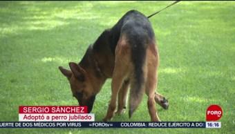 FOTO: Se jubilan 28 perros de la PF, 13 Julio 2019