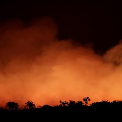 Así es el escenario que deja el incendio forestal del Amazonas