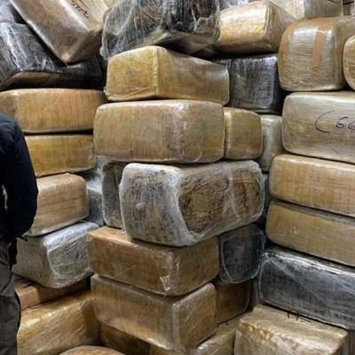 FGR asegura más de nueve toneladas de marihuana en Tijuana
