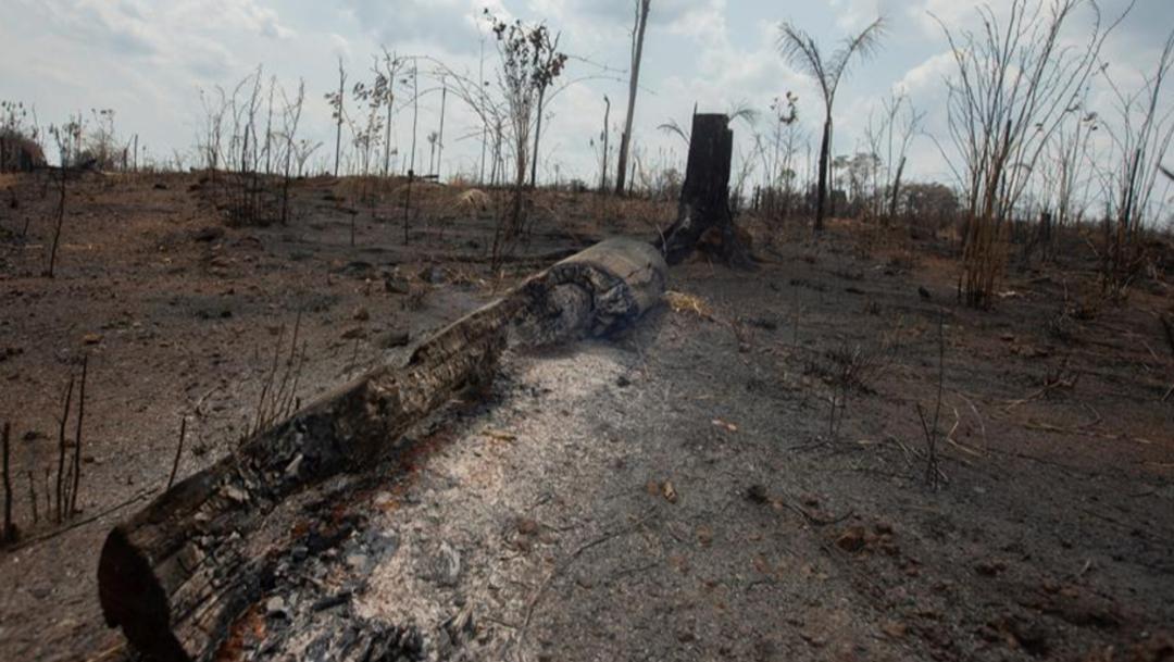 Imagen: Al menos 10 militares y 30 bomberos han llegado entre el sábado y este lunes a esas regiones del país, 26 de agosto de 2019 (EFE, archivo)