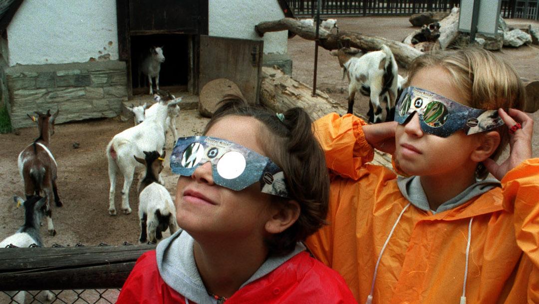 solar-comportamiento-animales-eclipse-total-reino-animal
