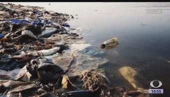 FOTO: Gobierno británico apoya empresas que ayudan reducir uso plástico