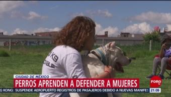 Foto: Entrenan Perros Defender Mujeres 13 Agosto 2019