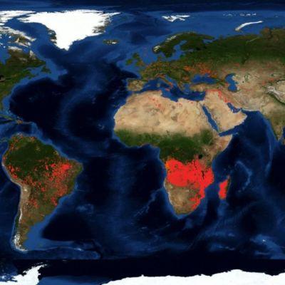 Imágenes de la NASA muestran más incendios en África que en el Amazonas