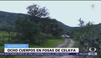 Hallan ocho cuerpos en fosas clandestinas en Celaya