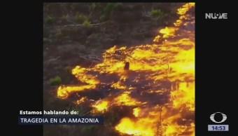 Foto: Incendio Amazonas: Por Qué Sucedió Efectos 23 Agosto 2019