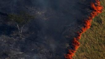 FOTO Amazonia concentra más de la mitad de incendios en Brasil (Twitter)
