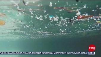 Foto: Micropartículas Plástico Agua Potable No Riesgo Salud 23 Agosto 2019