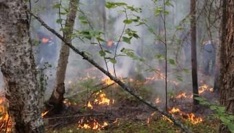 Circulo-Artico-alerta-global-incendios-forestales-Siberia
