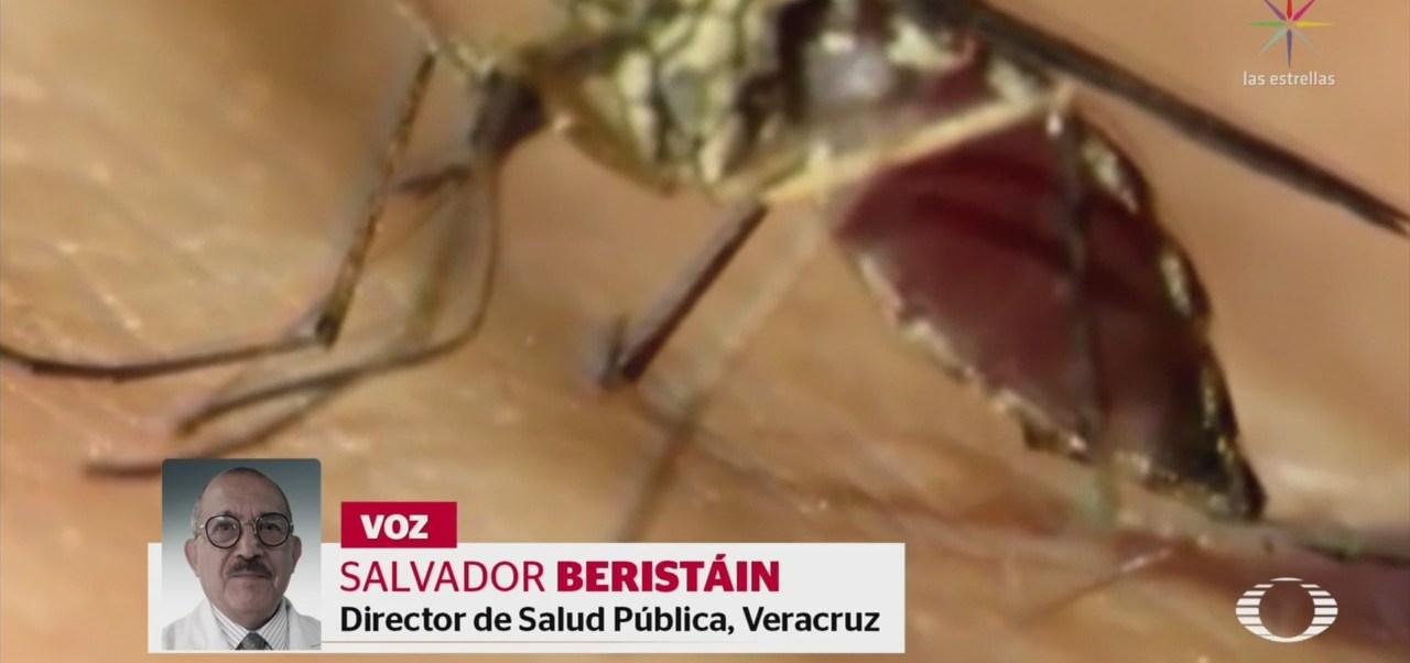 Foto: Cambio Climático Aumenta Casos Dengue Mundo 12 Septiembre 2019