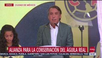 Foto: Emilio Azcárraga Jean Presenta Alianza Para La Conservación Del Águila Real