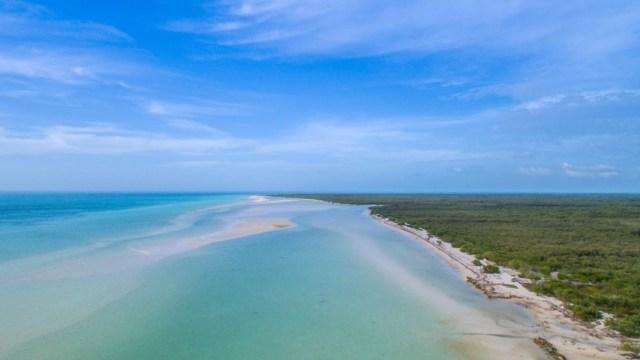 Reportan destinos del norte de Quintana Roo libres de sargazo