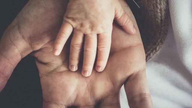 Foto: Paternidad, manos de padre e hijo