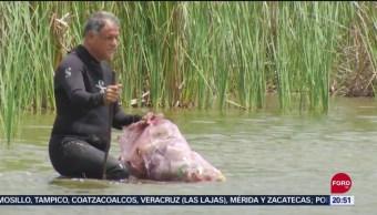 FOTO: Realizan trabajos de limpieza en laguna de Yalahau, en Yucatán, 13 SEPTIEMBRE 2019