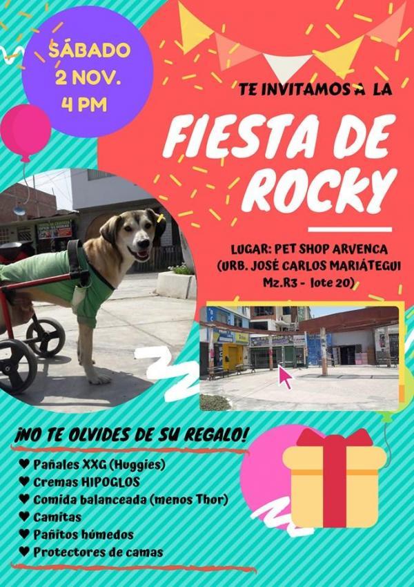 Foto: Colecta para Rocky organizada en redes sociales. 31 Octubre 2019