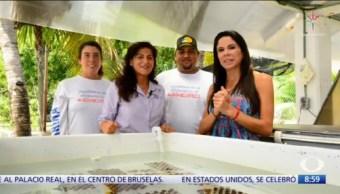 Al Aire, con Paola Rojas: Programa completo del 14 de octubre del 2019