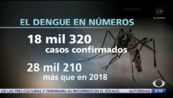 Aumentan los casos de dengue en México