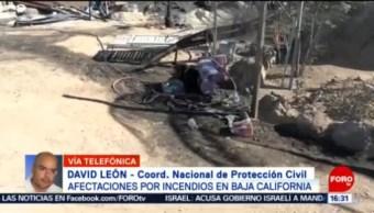 FOTO: Bomberos y militares siguen combatiendo incendios en Baja California, 28 octubre 2019