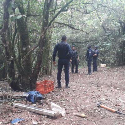 Aseguran campamento de grupo delictivo en Michoacán