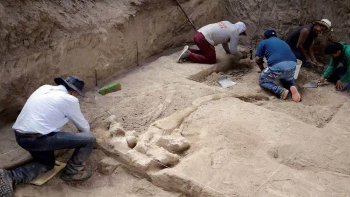 Foto: El hallazgo ocurrió cuando un campesino del lugar intentaba construir un horno. Twitter/@vercorrespons