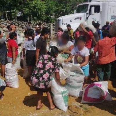 Pobladores rapiñan comida para cerdos y pollos tras volcadura de tráiler