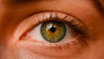 Foto: El glaucoma es una enfermedad muy prevalente, ya que entre el 2,5 y el 3 % de la población general puede estar afectado por ello, el 23 de octubre de 2019 (Pixabay)