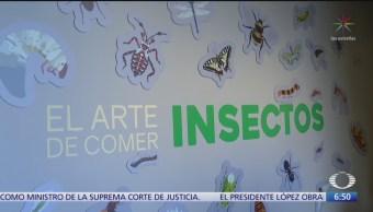 Inauguran exposición 'El arte de comer insectos'