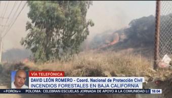 FOTO: Incendios forestales en Baja California dejan tres personas fallecidas, 5 octubre 2019