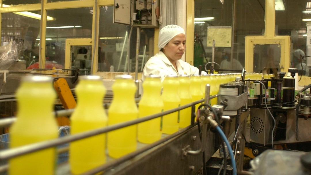 Foto: Trabajador en fábrica de jugos, 18 de diciembre de 2001, Estado de México