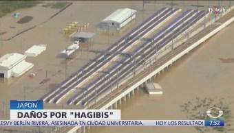Mueren al menos 40 personas en Japón por tifón 'Hagibis'
