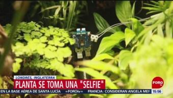 FOTO: Planta se toma una selfie,