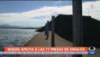 Sequía afecta a las 11 presas de Sinaloa