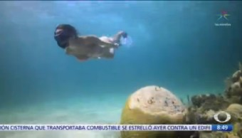 Siembran coral para rescatar arrecifes en México