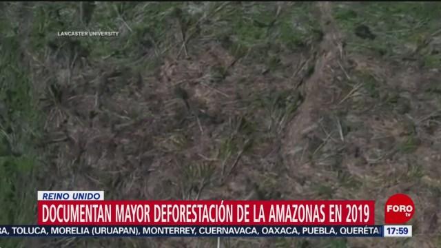FOTO: Amazonas registra la mayor deforestación en la historia, en 2019, 28 noviembre 2019