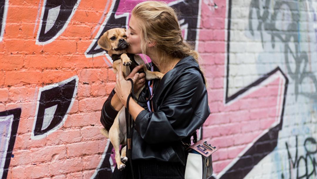 Imagen: Tener un animal de compañía ayuda a los adultos mayores a incorporar mejores esquemas de movimiento y tener una sensación de ocupación y bienestar general, 4 de noviembre de 2019 (Getty Images, archivo)