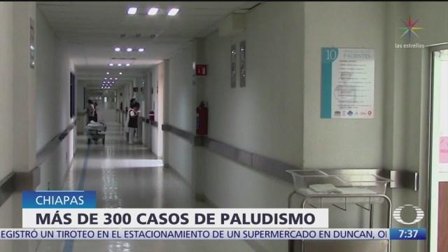 Foto: Confirman 360 casos paludismo Chiapas,