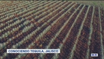 Foto: Conociendo Tequila Jalisco,